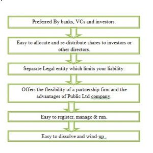 advantages of public limited liability company