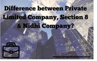 Private limited, Section 8 & Nidhi Company